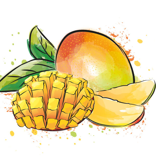 Illustration Mango